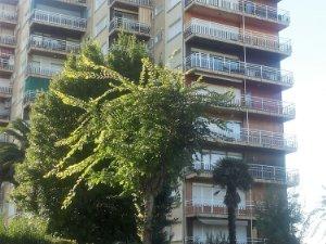 long term rentals in laredo cantabria houses and flats idealista rh idealista com
