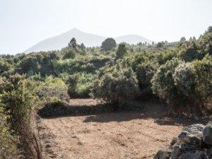 Terrenos En Tenerife Santa Cruz De Tenerife Idealista