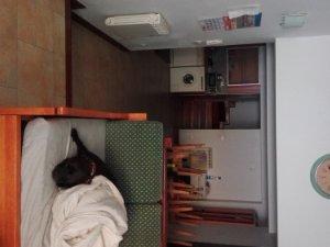 Alquiler de habitaciones en Barakaldo: 6 disponibles